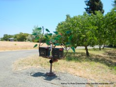 ivy vine mailbox