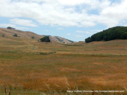 Hicks Valley meadows