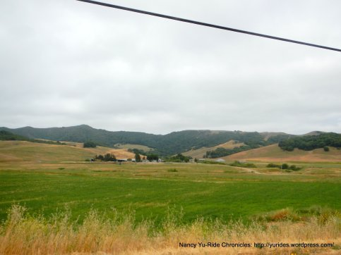 Chileno Valley Rd meadows