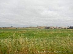 open valley meadows