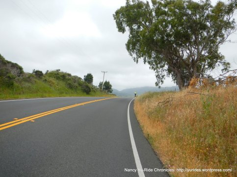 CA-1 S rolling climbs