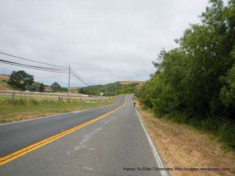 CA-1 S climb to Pt Reyes Vineyard