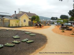 at Pt Reyes Town Commons
