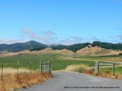 green meadows-Chileno Valley