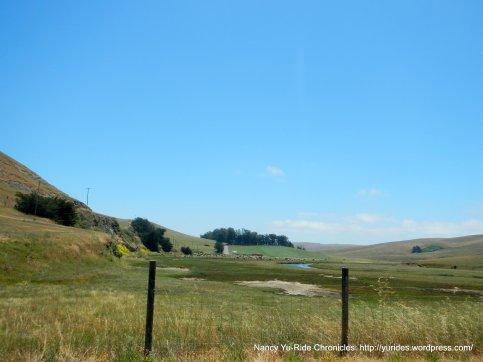 Estero meadows