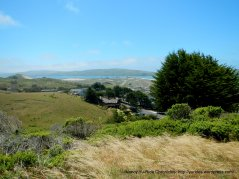 View of Tomales Point