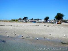 Sand Point beach area