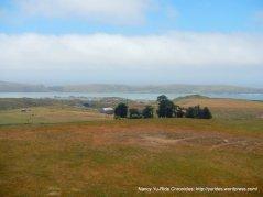 beautiful meadow views