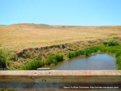 Stemple Creek