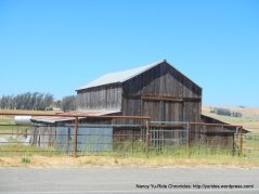 Tomales Rd barn