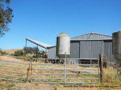 Middle 2 Rock Rd farm