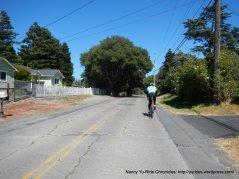 Bodega Ave