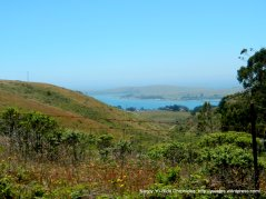 view of Bodega Bay