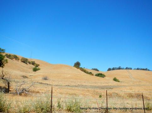 golde hills