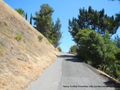 Prospect Ave climb