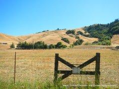 valley meadows