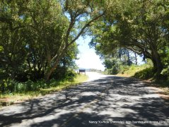 climb out Heart's Desire to Pierce Point Rd