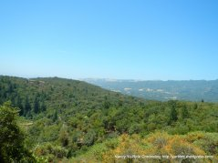 mountain views
