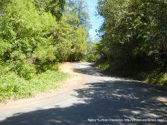 climb up Mt Veeder Rd