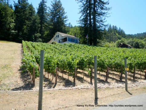 Veeder vineyards