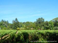 Redwood Rd vineyards