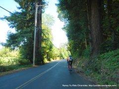 Redwood Rd
