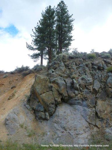 Alpine canyon landscape