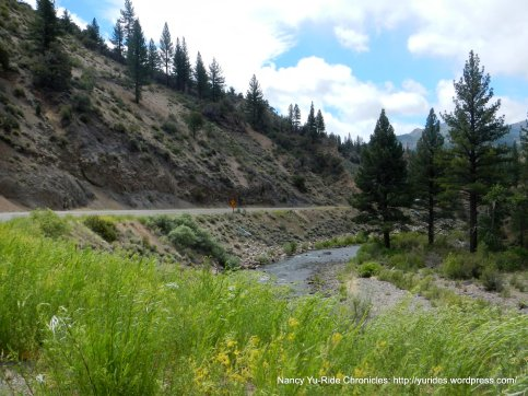 East Fork Carson River