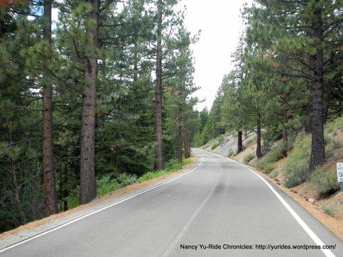 CA-4 W towards Ebbetts Pass