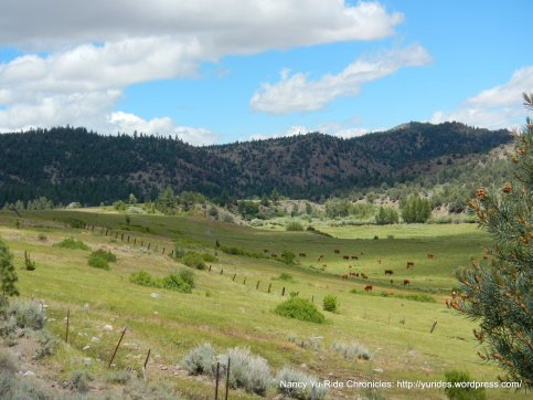 Indian Creek recreation Lands