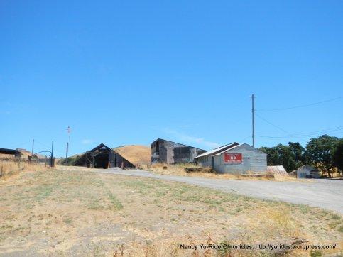 at Pig Farm Hill summit