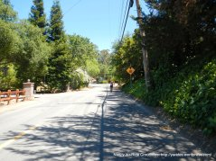 climb up Vine Hill Way