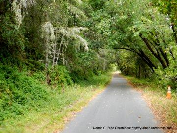 Cross Marin Trail