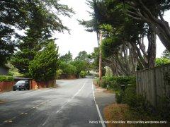 Edgewood Ave