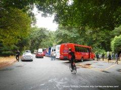 Muir Woods tour buses