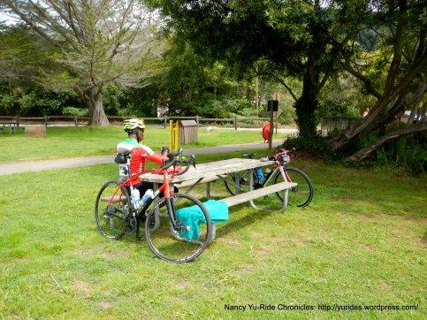 Stinson Beach picnic area