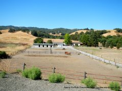 Briones ranch