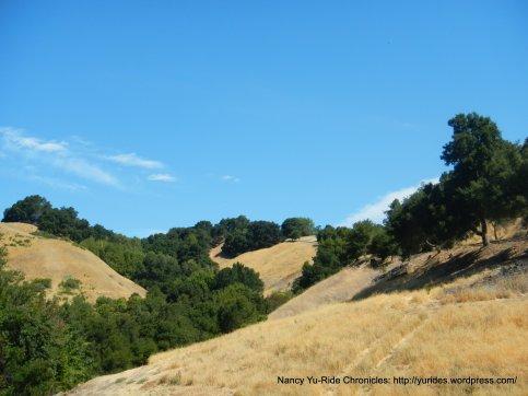 Lafayette hills