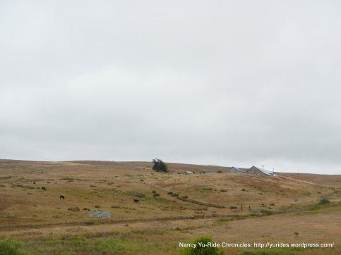 ridgetop ranches