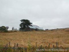 ridge top ranch