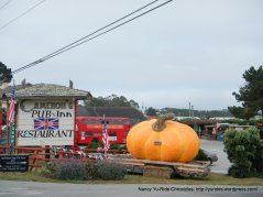 HMB pumpkin