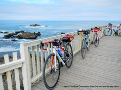 at Pigeon Point