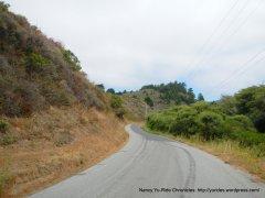 Gazos Creek Rd