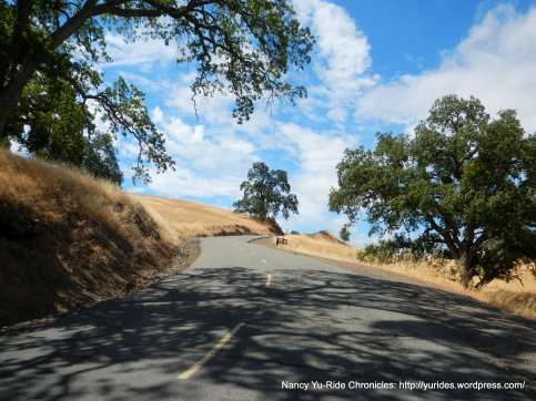 towards Burma Road Trail