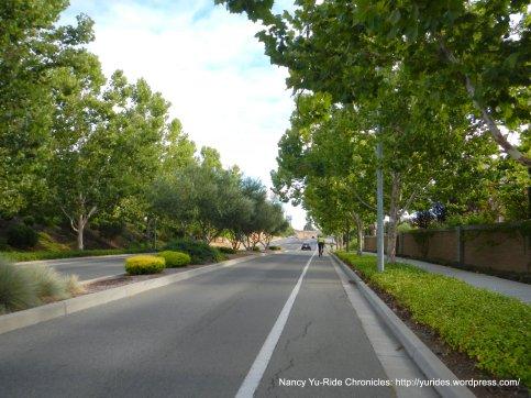 Morello Ave