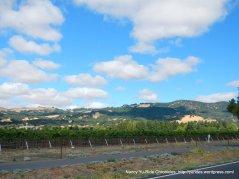 valley vineyards