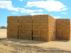 stacked bales