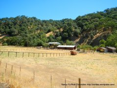 mcqueeney ranch