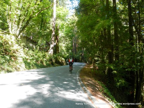 climb up haskins hill-pescadero creek rd