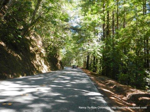 climb up haskins hill-pescadero creek rd